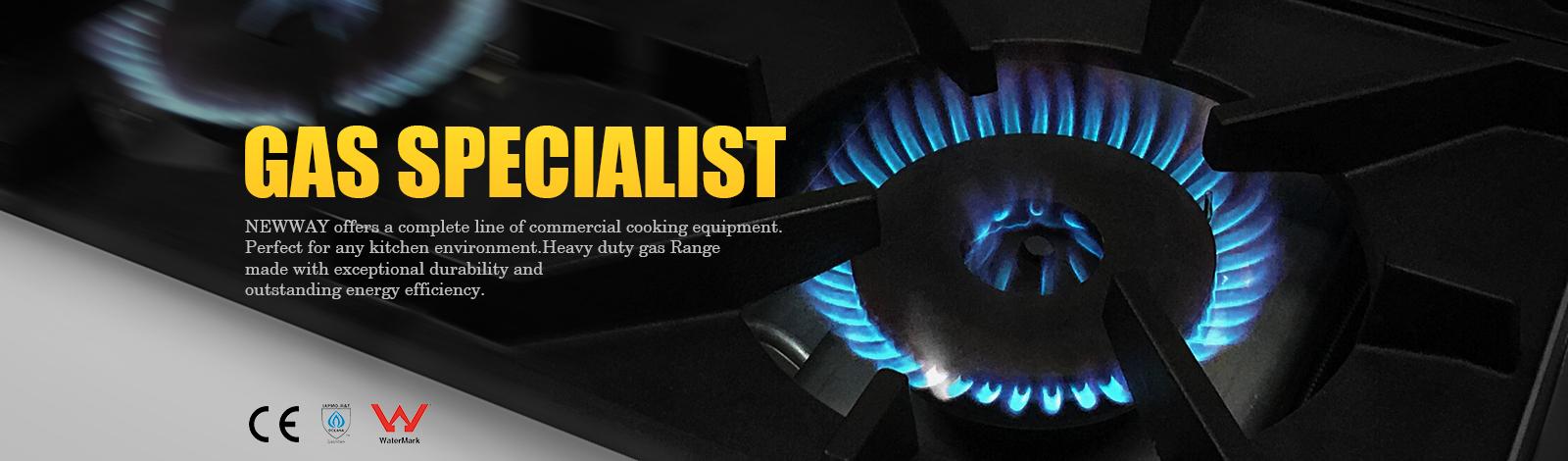 NEWWAY Gas Specialist